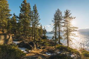 Tahoe 12 16-24